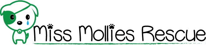 Miss Mollies Dog Rescue Charity